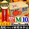 田村みかん/特選ギフト品10kg【Mサイズ】赤秀・贈答品