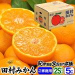 田村みかん【2Sサイズ】5kg(1箱=約70〜75個前後)
