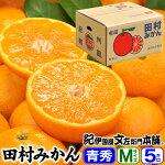 田村みかん/ギフト選別品/5キロ箱Mサイズ