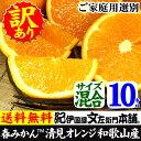オレンジ かんきつ