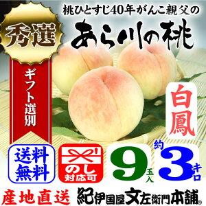 紀州和歌山 あら川の桃(白鳳)手選り【秀選】 約3kg/9玉入