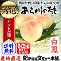 紀州和歌山あら川の桃(白鳳)手選り【秀選】2kg強/6玉入