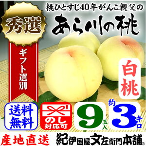 紀州和歌山 あら川の桃 【白桃種】 手選り【秀選】 3kg強/9玉入生産者からの直送となります。