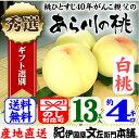 紀州和歌山 あら川の桃 【白桃種】手選り【秀選】 約4kg/13玉入 生産者からの直送となります。