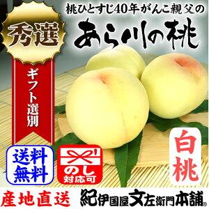 紀州和歌山 あら川の桃 【白桃種】 手選り【秀選】 約1.8kg/6玉入 生産者からの直送となります。