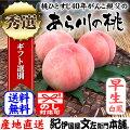 紀州和歌山あら川の桃(早生品種)手選り【秀選】約2kg/8玉前後入