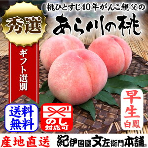 紀州和歌山 あら川の桃(早生白鳳品種)手選り【秀選】 約1.8kg/6玉入