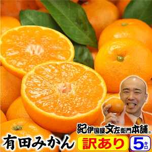 みかん 送料無料 訳あり有田みかん・和歌山ミカン たっ...