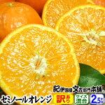 わけあり春かんきつ『セミノールオレンジ』【送料無料】和歌山県産・紀州有田産【キズ】(お試し少量セット2.5kg)買得品・ご家庭用・果汁(ジュース)たっぷりの濃厚柑橘を産地直送