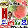 田中さんちの大きなわかやまの桃(もも)約2kg箱和歌山県紀の川市産・田中さんちの桃(白鳳・嶺鳳)【送料無料】