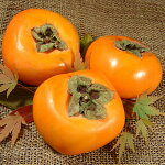 紀州和歌山の種無し柿