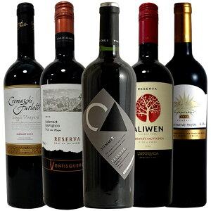 ワイン通も唸る長期熟成チリ!リゼルヴァ5本 ギフト プレゼント 750ML