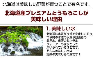 【送料無料】北海道産「プレミアム完熟とうもろこし」2Lサイズをどっさり10本!【恵味】【レストランぼーの】【RCP】自社