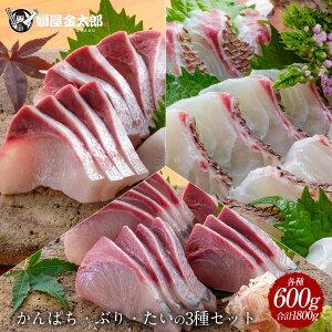 匠が育てた極上の真鯛、ぶり、カンパチ3種セット 刺身 各種600g 3種で1,800g 刺身はもちろんのこと、塩焼き、しゃぶしゃぶ、ソテー、握り等数々の料理におすすめです。