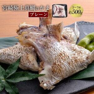 匠が育てた極上の鯛 タイ たい 鯛カマ約500g(5〜7個入り)塩焼き、照り焼き等の料理におすすめです。