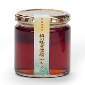 梅の蜂蜜濃縮エキス 健康補助食品 280g