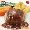 黒毛和牛生ハンバーグセット 160g×5pc ハンバーグソース付き【送料無料】日本食品 九州 福岡 お取り寄せ 福岡県よ…