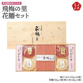飛梅の里 花麺セット【送料無料】