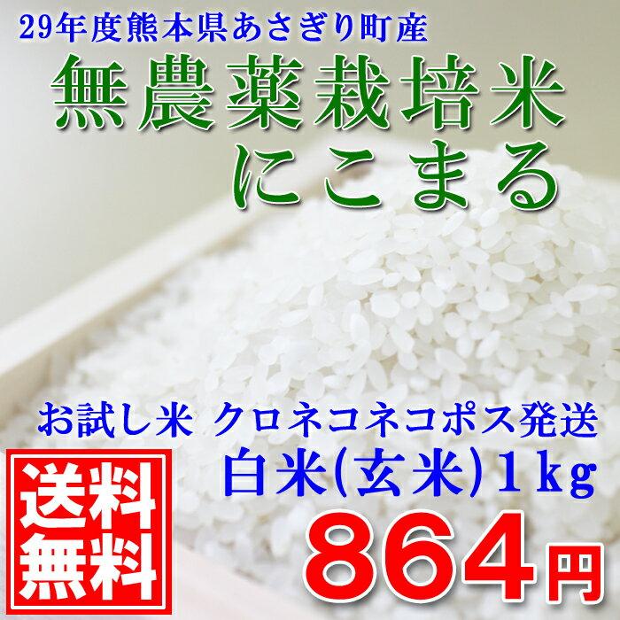 【送料無料】【無農薬栽培】29年度産 熊本県あさぎり町産にこまる白米1kg(玄米1kg)【ネコポス配送】