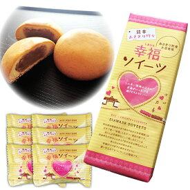 【熊本県あさぎり町産大豆使用】幸福ソイーツ 6個箱入り【ギフト】