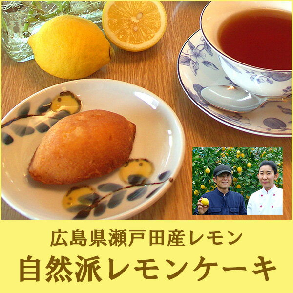 【無添加】広島レモンケーキ 詰め合わせ ギフト 10個入り 化粧箱入り【送料無料】【檸檬】【広島みやげ】