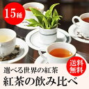 500円ポッキリ メール便 送料無料 紅茶 ティーバッグ お試し 飲み比べセット 全15種類から5種類を選択 計10包入り JAF…