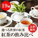 【1000円ポッキリ 送料無料】プチギフト 紅茶 ハーブティー ティーバッグ 飲み比べセット 全19種類から5種類を選択