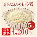 【送料無料】お米屋さんのもち麦 お得な5kg(1kg×5袋)