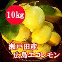 瀬戸田産 広島エコレモン(減農薬特別栽培)10キロ【送料無料】【檸檬】