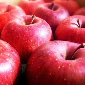 りんご 生産者品種おまかせ 5kg 約16〜20玉【送料無料】【山形県朝日町産】【国産】