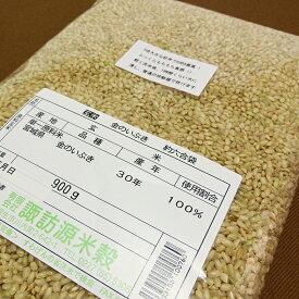 【1000円ポッキリ 送料無料】【すわげんの省洗米】令和2年産 宮城県産金のいぶき 玄米 お試し 900g