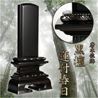 Mortuary ebony Lotus with Kasuga 4.5 inch