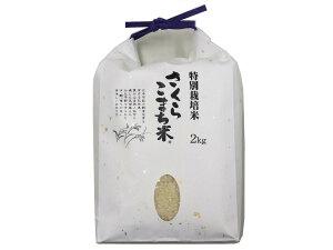 新米 令和2年産 特別栽培米 さくらこまち米 2キロ あきたこまち 大仙 中仙