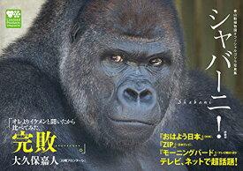 東山動植物園オフィシャルゴリラ写真集 シャバーニ! 【中古】