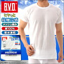 【B.V.D.】 接触冷感 メッシュ編み 吸水速乾 丸首半袖Tシャツ 綿100% メンズ インナーシャツ クールビズ BVD 【コンビニ受取対応商品】