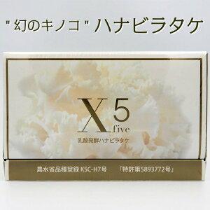 送料無料 乳酸発酵 ハナビラタケ X5 120粒 サプリ 健康 美容 乳酸菌 βグルカン アミノ酸 きのこ はなびらたけ 中高年 日本製 スーパーフード 健康食品 エストロゲン 人気 おすすめ