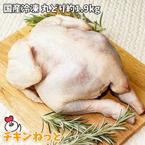 国産冷凍 丸どり約1900g 1羽(5〜7人分目安) 丸鶏 中抜き アウトドア BBQ クリスマス ローストチキン 用 手作り ローストチキン ダッチオーブン 用 ご確認:10kg毎に送料一口加算となります