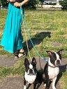 リード 犬 ペット用 ぷちぷちキラキラ♪ストーンビーズを詰め込んだチューブ形コードが可愛くて新しい☆ペットリード キャンディやジュエリーを思わせる素材感 強度のあるワイヤーでしっかり丈夫 リード 犬 リード フック リード 首輪 小型犬 中型犬 大型犬