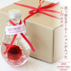 母の日ギフト送料無料【herbarium Bottle】リュクスハーバリウムボトル真っ赤なカーネーションの入ったしずくの形のハーバリウム−植物標本−ボックス&ラッピングお届け