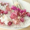 【送料無料/消費税込み価格】【flower gift】<スイートピンク>ドライフラワー詰め合わせハーバリウムやアロマキャ…