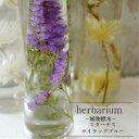 【あす楽おやすみ中です】【herbarium Bottle】ハーバリウムボトル スターチス<ライラックブルー>−植物標本−母の日ギフト