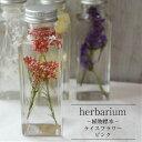 【あす楽対応品】【herbarium Bottle】ハーバリウム 角ボトル<スクエアミニ>ライスフラワー<ピンク>−植物標本−母の日ギフト