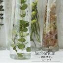 【あす楽おやすみ中です】【herbarium Bottle】ハーバリウムボトル ユーカリ−植物標本−母の日ギフト