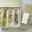 【送料無料】お花のプレゼント【herbarium Bottle】ハーバリウムボトルギフト3本セット −植物標本−ギフト