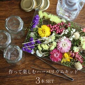 【herbarium Bottle】届いてすぐ始められます作って楽しむ・ハーバリウムキット3本セット 花材・ハーバリウムオイル・ハーバリウム用ボトルがセット−植物標本−