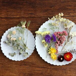 【herbariumBottle】届いてすぐ始められます作って楽しむ・ハーバリウムキッド3本セット花材・ハーバリウムオイル・ハーバリウム用ボトルがセット−植物標本−