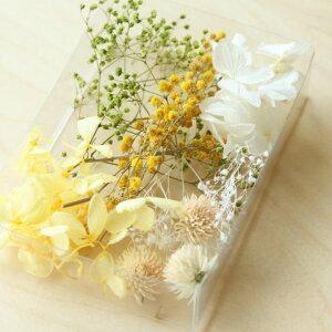 【ハンドメイド】【春バージョン】人気のミモザが入ったイエローベースのセット手作りハーバリウムキット届いてすぐ始まられるスターターキット植物標本花ギフトオリジナルこちらは送料無料でお届けします。