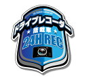 ドライブレコーダー搭載車用警告ステッカーエンブレムタイプ日本語・英語