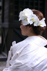 胡蝶蘭髪飾り【白】【ミニサイズ】【3サイズ】花嫁さんに愛される白いファレノ髪飾り【白無垢】【ウェディングドレス】に清楚に花を添える上品でオシャレなヘッドドレス】【ケース付】【一本単位】