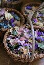 ドライフラワーの花びら【お得な詰め合わせ】【ウェディング】【フラワーシャワー】【ハーバリウム作り】【ウェディン…